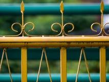 黄色篱芭 库存图片