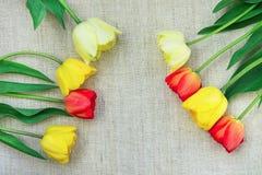 黄色红色郁金香在框架安排了在轻的概略的亚麻布最低纲领派样式母亲` s天生日复活节 免版税库存照片