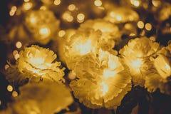 黄色花和淡黄色bokeh 免版税库存图片