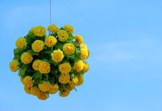 黄色花花束一个垂悬的盛开在球形形状的与作为背景的拷贝空间蓝天 任何特别e的装饰 免版税库存图片