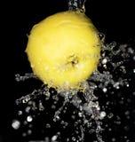 黄色苹果在黑背景的水中 库存照片