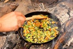 黄色蘑菇用葱 免版税库存图片
