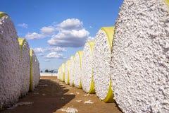 黄色被包裹的大包棉花 免版税库存图片