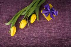 黄色郁金香和礼物盒在紫罗兰色被编织的背景 免版税库存照片