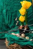黄色郁金香用在黑罐、杨柳和棉织物的肿胀 复活节构成用鹌鹑蛋 花森林春天白色 库存照片
