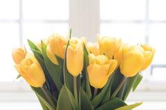 黄色郁金香花束 免版税库存图片