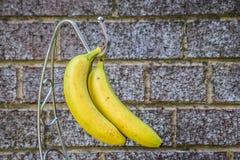 黄色香蕉 库存照片