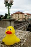 黄色鸭子在卢布尔雅那 免版税图库摄影