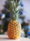 黄色,成熟和水多的菠萝在桌上 库存照片