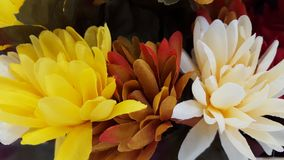 黄色,橙色,秋天叶子 免版税图库摄影