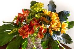 黄色,红色和橙色花花束  免版税库存图片