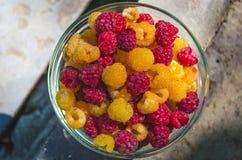 黄色Eco的莓果-和红色有机莓 免版税库存照片