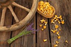 黄蘑菇和淡紫色在木背景与车轮 库存图片