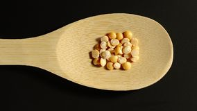 黄豌豆出现于木匙子-停止运动 股票视频