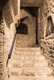 黄道十二宫的胡同利奥在晚上在Tel的Aviv-Yafo老城市Yafo在以色列 库存图片