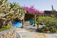 黄雀色glorieta海岛la palma广场 免版税图库摄影