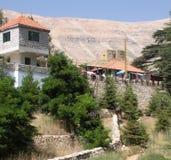 黎巴嫩旅游业,黎巴嫩雪松 库存图片
