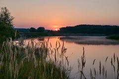 黎明捕鱼早晨河 黄色夏天的草,软的口气,雾 免版税库存图片