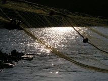 黎明捕鱼 免版税库存照片