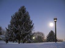 黎明月亮上升 免版税库存图片