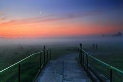 黎明有薄雾的路 免版税库存图片