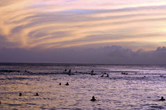 黎明游泳 免版税库存照片