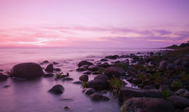黎明紫色 图库摄影