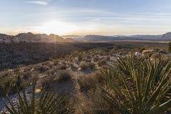 黎明视图红色岩石峡谷全国保护地区内华达 免版税库存图片