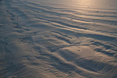 黎明起波纹沙子 库存照片