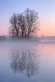 黎明, Jackson Hole湖 库存照片