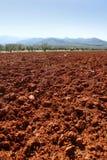 黏土早晨红色土壤晴朗的纹理 库存图片