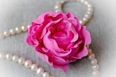 黏土牡丹粉红色 库存照片