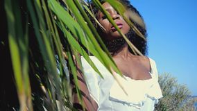 黑人女孩在棕榈树附近站立 影视素材