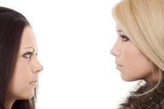黑人白肤金发的毛皮纵向二妇女 库存图片