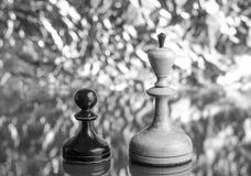黑典当和棋的白女王/王后 库存照片