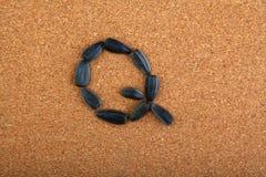 黑向日葵种子字母表木背景 免版税图库摄影