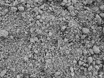 黑土壤关闭 免版税库存照片