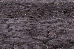 黑地球土壤 免版税库存照片