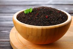 黑干茶用在一个碗的一棵樱桃在一张木桌上 库存图片