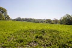 黑斯廷斯战役战场在东萨塞克斯郡 库存图片