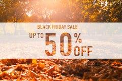 黑星期五销售50%在五颜六色的秋天叶子背景的文本 与五颜六色的叶子的词黑色星期五 库存例证