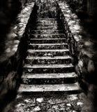 黑暗的令人毛骨悚然的楼梯 免版税库存图片