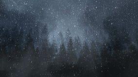 黑暗的冬天夜背景圈 股票录像