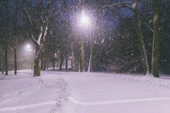黑暗的冷淡的晚上公园冬天 在有雪花的一个冻黑暗的公园下雪 降雪在晚上 雪风暴 库存图片