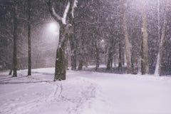 黑暗的冷淡的晚上公园冬天 在有雪花的一个冻黑暗的公园下雪 降雪在晚上 雪风暴 库存照片