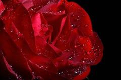 黑暗的小滴红色奉承话 库存图片