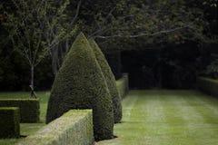 黑暗的庭院修剪的花园 库存图片