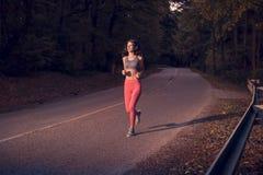 黑暗的森林,日落日出,木树,跑的跑步在asph 库存图片