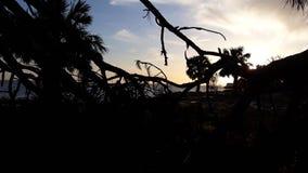 黑暗的海湾 图库摄影