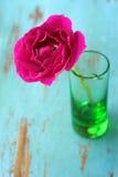 黑暗的粉红色玫瑰色花瓶 库存照片